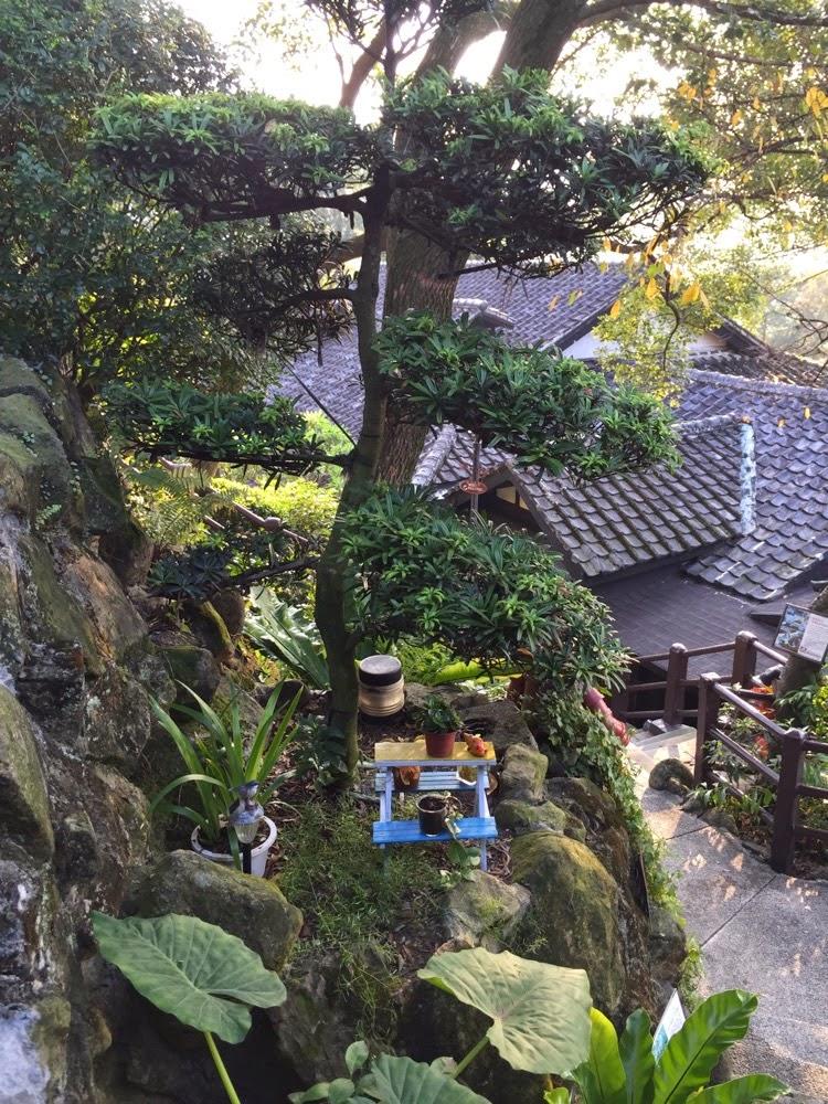 日式松柏和花盆架